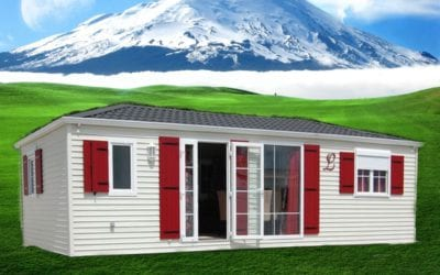 Louisiane Blueberry – Mobil home d'occasion – 29 000€