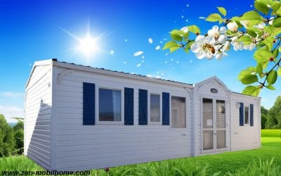 Irm Super Octalia – Mobil home d'occasion – 13 000€ – PROMOTION – 3Chb