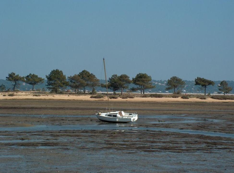 Camping En Gironde - Bassin d'Arcachon - Zen Mobil homes